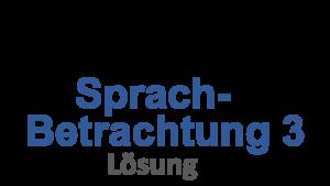 Probeunterricht Prüfungsaufgaben Sprachbetrachtung 3 Lösung